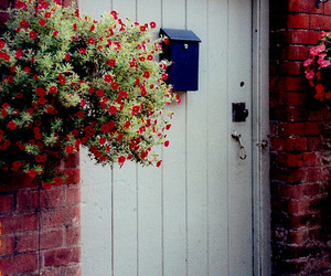 door, flower, and mail box image