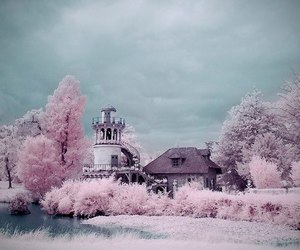 pink, photography, and girly image