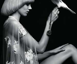 bird, fashion, and vogue paris image