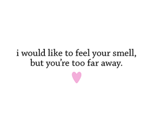 love, text, and smell image