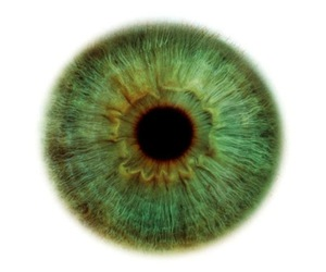 green and eye image