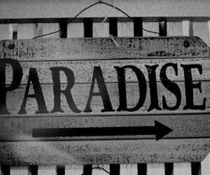 paradise and black and white image