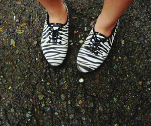 brogues and zebra print image