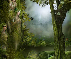 drawing, fantasy, and forest image