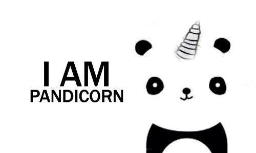 pandicorn discovered by mecanikz on we heart it