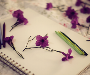 flowers, drawing, and purple image