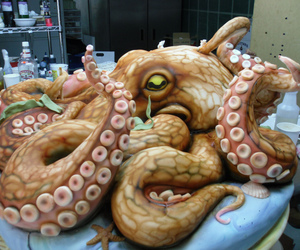 cake and octopus image