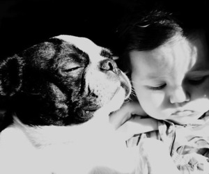 baby, black and white, and photography image