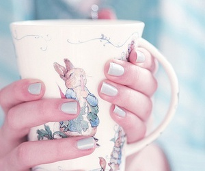 cup, rabbit, and nails image