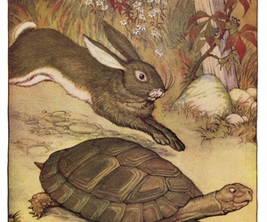fable, hare, and book illustration image