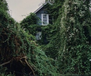 house, green, and nature image
