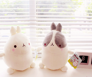 molang, cute, and bunny image