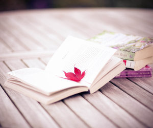 book and autumn image