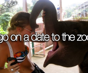 zoo, date, and love image