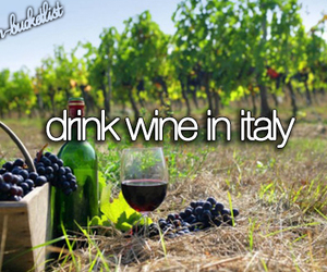 italy, wine, and bucket list image