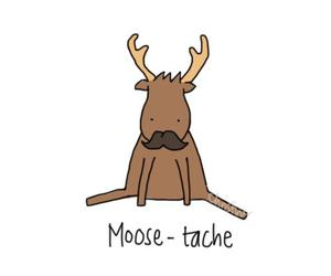 cute, moose, and mustache image