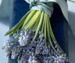 blue, cute, and flower image
