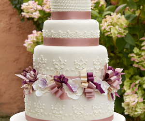 bows, purple, and bridal image