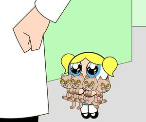bubbles, cat, and powerpuff girls image