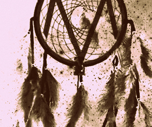 dreamcatcher, the maine, and feathers image