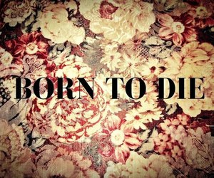 born to die, flowers, and lana del rey image