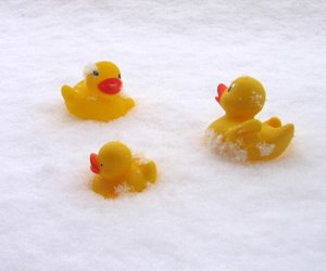 rubber duck and cute image