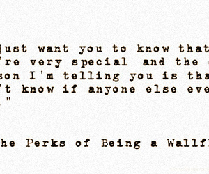 quote, special, and the perks of being a wallflower image