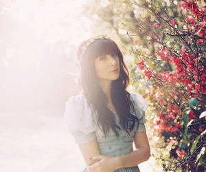 blossoms, fashion, and flowers image
