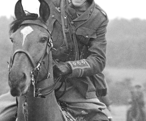black and white, tom hiddleston, and war horse image