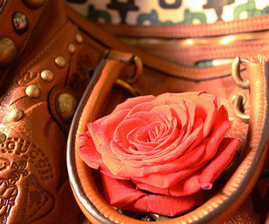 bag, leather, and purse image