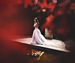 dress, red, and photography image