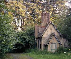 forest, surrey, and england image