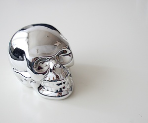 skull and silver image