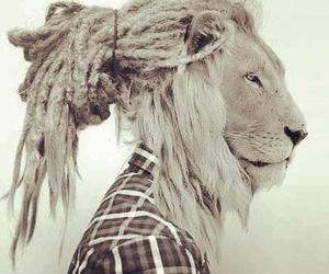 dreads, girl, and tiger image