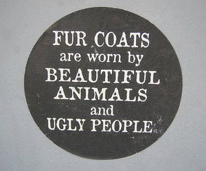 animal, fur, and people image