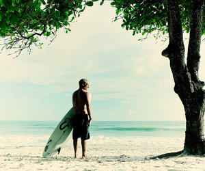 surf, beach, and tree image