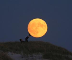moon, night, and grunge image