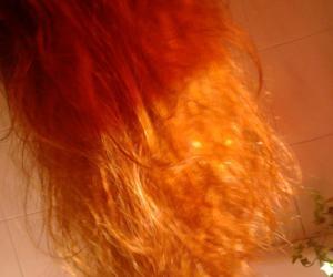 ginger hair, uu, and like sheeran image