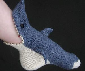 shark and socks image