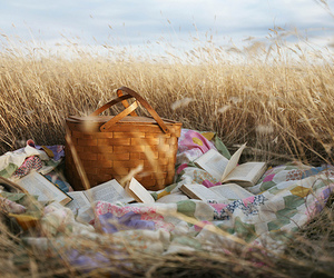 basket, field, and picnic image