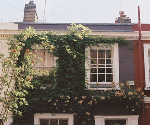 house, vintage, and flowers image