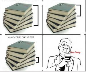 school, study, and funny image