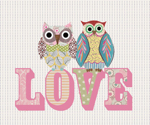 owl, love, and own image