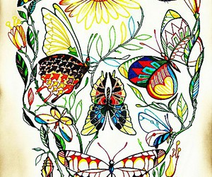 skull, butterfly, and art image