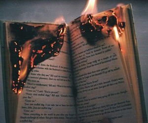 book, fire, and sex image
