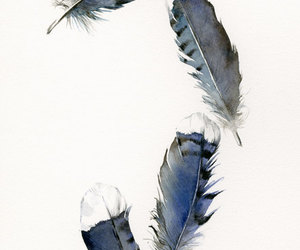 feather, feathers, and watercolor image
