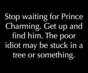 charming, prince, and quote image