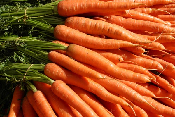 carrots, carrot juice, and carrot seeds image