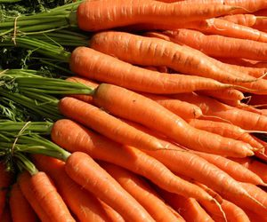 carrots, carrot seeds, and carrot juice image