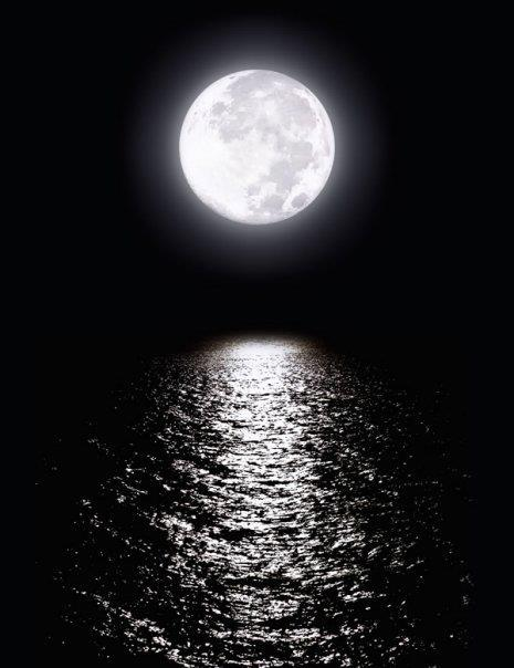moon, ocean, and photography image